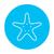 starfish line icon stock photo © rastudio