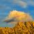 puesta · de · sol · cresta · hermosa · colores · nubes · paisaje - foto stock © RazvanPhotography