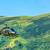 вертолета · изображение · машина · охота · преследование - Сток-фото © razvanphotography