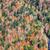 najaar · landschap · boom · kleurrijk · blad · vogel - stockfoto © razvanphotography
