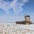 kış · iki · alan · kapalı · kar · yeşil - stok fotoğraf © razvanphotography