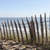 fence on a sand dune stock photo © razvanphotography