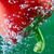 piros · bors · buborékok · étel · gyümölcs · zöld - stock fotó © razvanphotos