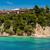 praia · naturalismo · reserva · pin · Grécia · azul - foto stock © razvanphotos