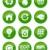 wereld · blad · waterdruppel · groep · vloeibare · regen - stockfoto © redkoala