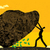 nem · kő · üzletember · talál · új · jövedelem - stock fotó © retrostar