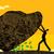 Leaving No Stone Unturned stock photo © retrostar