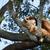 adormecido · panda · preto · dentes · jovem · bambu - foto stock © rghenry