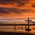 vogels · kruis · vlucht · dawn - stockfoto © rghenry