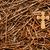 nagels · zonde · gouden · kruis · gebruikt - stockfoto © rghenry