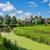 オランダ · 住宅 · 観光地 · オランダ · 水 · 草 - ストックフォト © rglinsky77