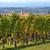 kerk · heuvels · Italië · katholiek · klein · vierkante - stockfoto © rglinsky77