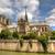 Париж · мнение · роз · цветы - Сток-фото © rglinsky77