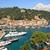 Италия · яхта · парусного · морем - Сток-фото © rglinsky77