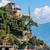 мнение · Италия · вертикальный · изображение · известный · города - Сток-фото © rglinsky77