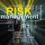 kockázatmenedzselés · szó · címkék · illusztráció · internet · háló - stock fotó © ribah