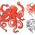 polvo · projeto · natureza · animal · tentáculo - foto stock © ridjam