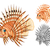 lion fish cartoon character stock photo © ridjam