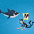 scary · rekina · cartoon · charakter · odizolowany · biały - zdjęcia stock © riedjal