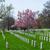 nagrobek · cmentarz · USA · starych · wyblakły · trawy - zdjęcia stock © rmbarricarte