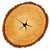 keresztmetszet · szett · fa · gyűrűk · térkép · természet - stock fotó © robertosch