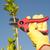庭園 · 作業 · 空 · 手 · 手袋 · 植木屋 - ストックフォト © roboriginal
