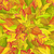 seamless pattern with autumn leaves autumnal fall stock photo © robuart