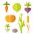 ingesteld · kleurrijk · groenten · voedsel · oranje · groene - stockfoto © robuart