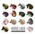 馬 · ロゴ · 白 · ベクトル · デザイン - ストックフォト © robuart