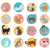collection of vector icons with cat in flat design stock photo © robuart