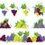 isolado · monte · uvas · videira · maduro · escuro - foto stock © robuart