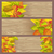 set of autumn sale flyers on wooden background stock photo © robuart