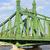 vrijheid · brug · Boedapest · Hongarije · vrijheid · plaag - stockfoto © rognar