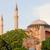 arquitetura · igreja · sabedoria · turco · famoso - foto stock © rognar