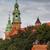 koninklijk · kasteel · Polen · reizen · rivier · baksteen - stockfoto © rognar