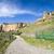 アンダルシア · スペイン · 農村 · 道路 · 風光明媚な - ストックフォト © rognar