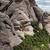 kaya · oluşumu · İspanya · kanyon · gökyüzü · duvar · soyut - stok fotoğraf © rognar