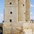 calahorra tower in cordoba stock photo © rognar