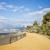 ビーチ · 夏休み · 風景 · 砂浜 · 太陽 · 休日 - ストックフォト © rognar