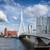 city of rotterdam skyline in netherlands stock photo © rognar