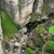 パス · 草原 · 新しい · 橋 - ストックフォト © rognar