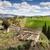 アンダルシア · にログイン · 緑 · フラグ · 色 - ストックフォト © rognar