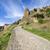 風景 · スペイン · アンダルシア · 木 · フィールド - ストックフォト © rognar