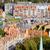 市 · グダニスク · ポーランド · マリーナ · 歴史的な建物 - ストックフォト © rognar