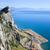 антенна · морем · мнение · Майорка · высокий · синий - Сток-фото © rognar