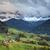 Italiaans · la · bos · landschap · zomer · Blauw - stockfoto © rudi1976