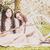 piknik · kiraz · çiçeği · iki · beyaz - stok fotoğraf © runzelkorn