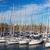 jacht · portu · niebieski · charakter · scena · rząd - zdjęcia stock © ruslanomega