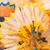 yellow and blue pencil shaving stock photo © ruslanomega