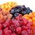 secas · frutas · coleção · branco · isolado - foto stock © ruzanna